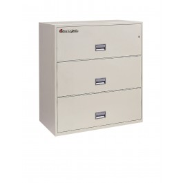 3L3610 Sentry Fire File - grey