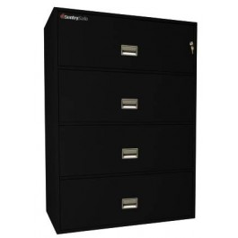 4L4310 Sentry Fire FIle -black