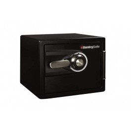 DS0200 Sentry Fire Safe