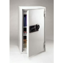S8731 Sentry Commercial Fire Safe