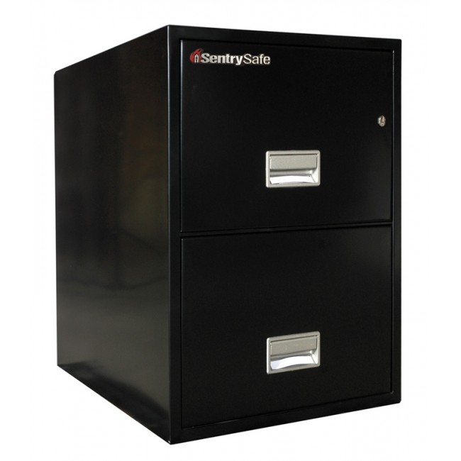 Sentry 2G3100 2 Drawer File Cabinet with Fire Rating - Fire Files ...