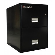 2G3100 Sentry Fire File - black