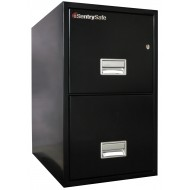 2T2500 Sentry Fire Safe- black